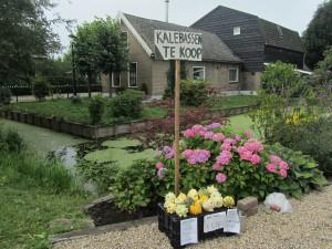 Polder Olanda, Gouda